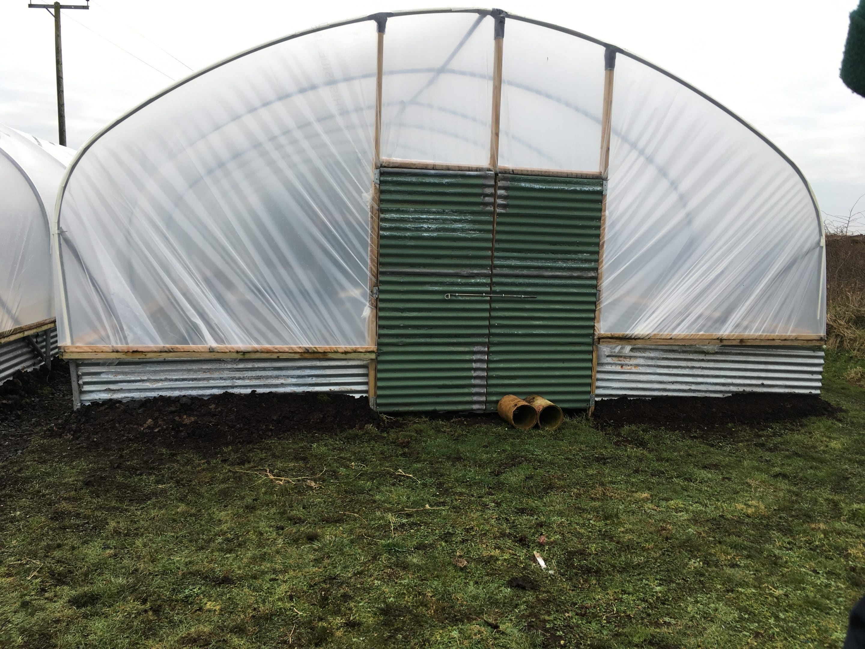 polytunnel project