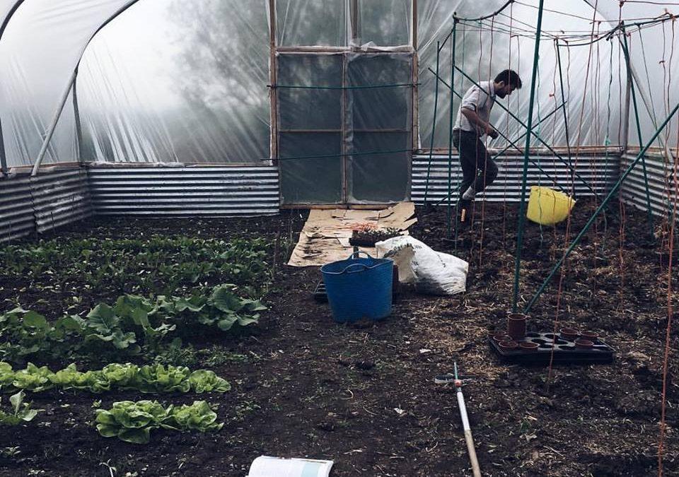 May Farm Updates