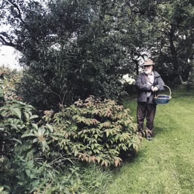 foraging northern ireland
