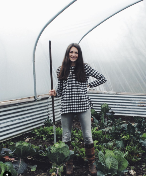 harvest ethical supper club ireland